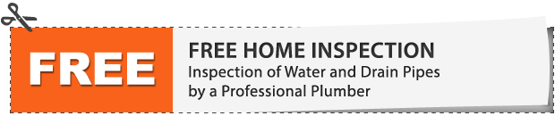 Free Home Inspection of Water and Drain Pipes by a Professional Plumber